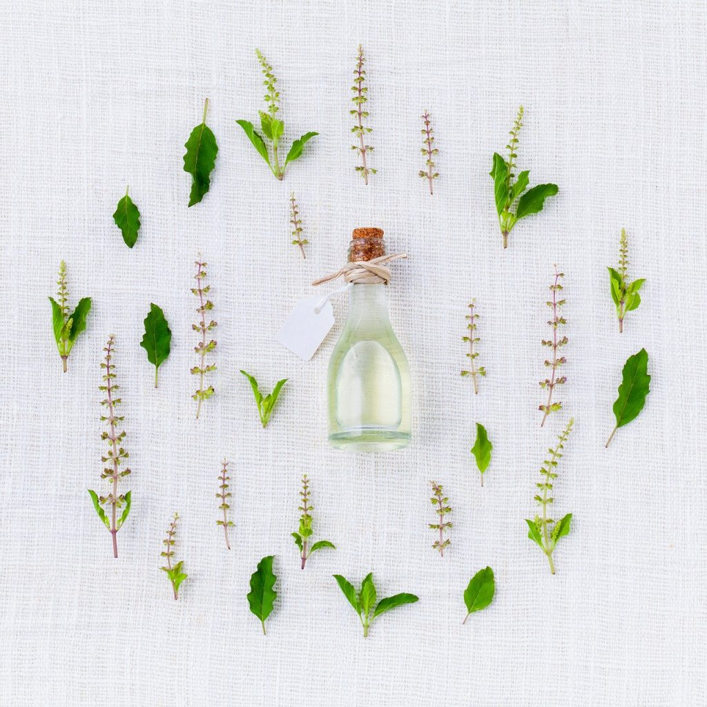 modogo products organic